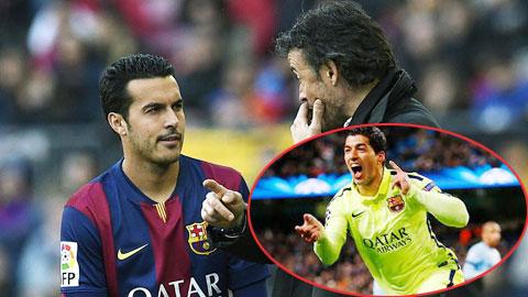 Bóng đá - Hàng công Barca: Pedro có thể đá chính thay Suarez