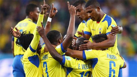 'Bóng đá Nam Mỹ  đang trong giai đoạn thịnh vượng nhất'
