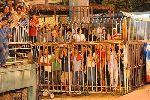 Hàng ngàn khán giả có vé không được xem U19 Việt Nam