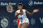 Chùm ảnh: Chùm ảnh: Venus Williams lên ngôi thuyết phục tại Dubai 2014