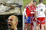 Chùm ảnh: Robben dính chấn thương vì... cá sấu tấn công!