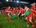 Chùm ảnh: 5 tân binh tại VCK EURO 2016: Họ đã giành vé đến Pháp bằng cách nào?