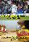 Ảnh chế: Mayweather thắng nhờ Mourinho